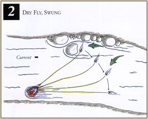 Fly fishing techniques for beginners 101 part 38 faol for Fly fishing techniques