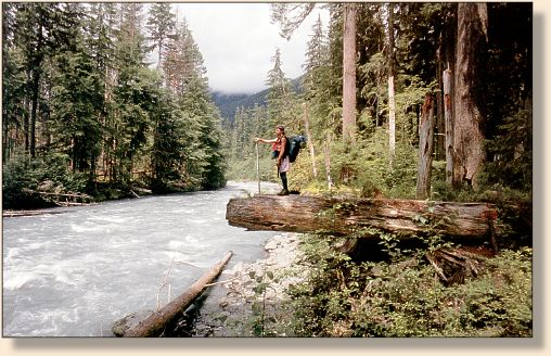 Google images for Hoh river fishing