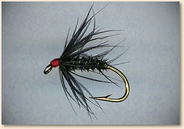 wet flies - rediscovered - fly angler's online volumn 10 week 3, Fly Fishing Bait